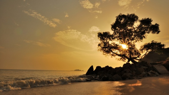 Photo of seaside morning sunrise with beautiful light effect