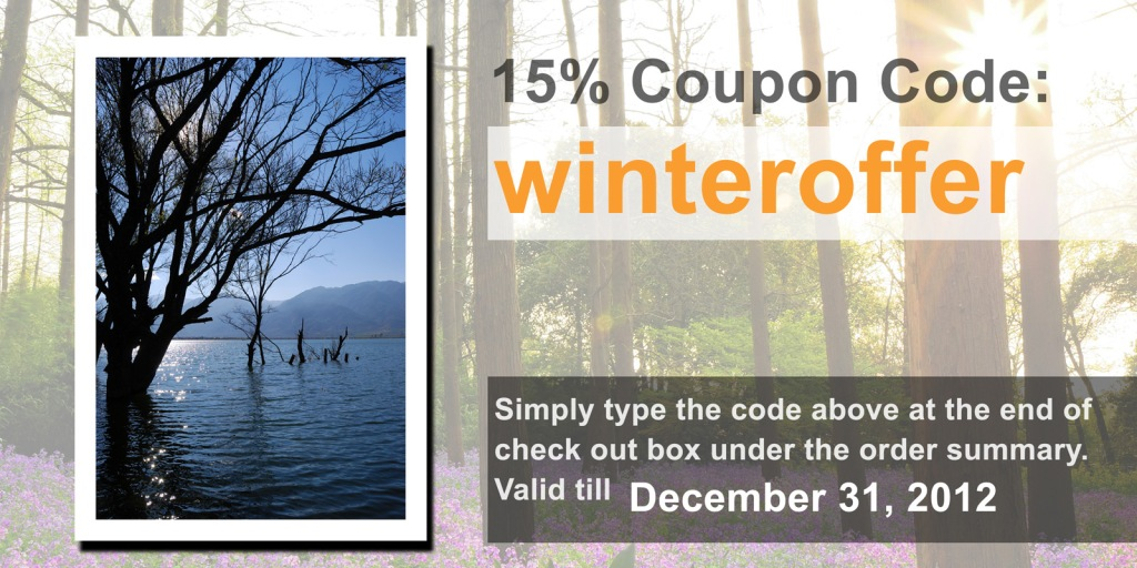 2012 Winter holiday special offer, coupon code: winteroffer