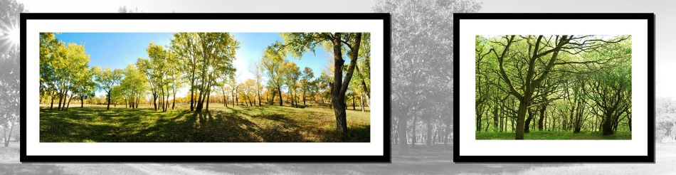 Home Deco Fine Art Photo Framing