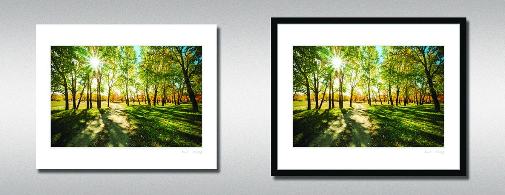 Print Of The Month Collection July 2013