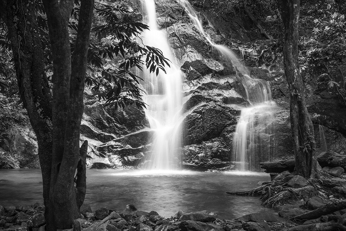 Inspiring Nature Photos Black And White