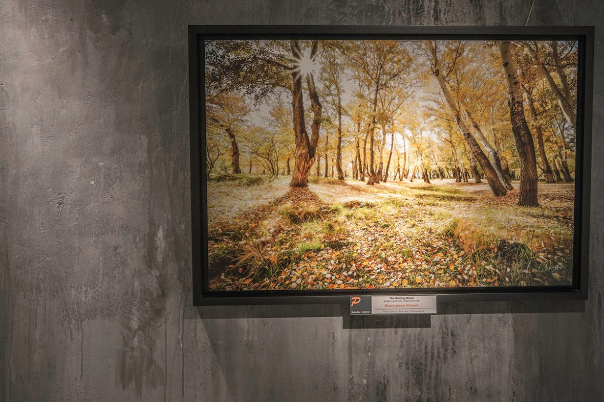 Landscape Photo Exhibition Show