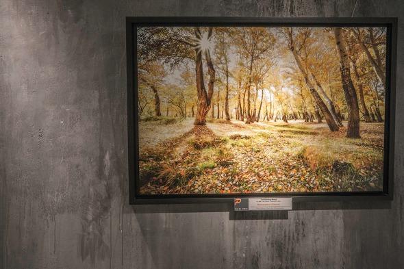 Landscape Photo Exhibition Show