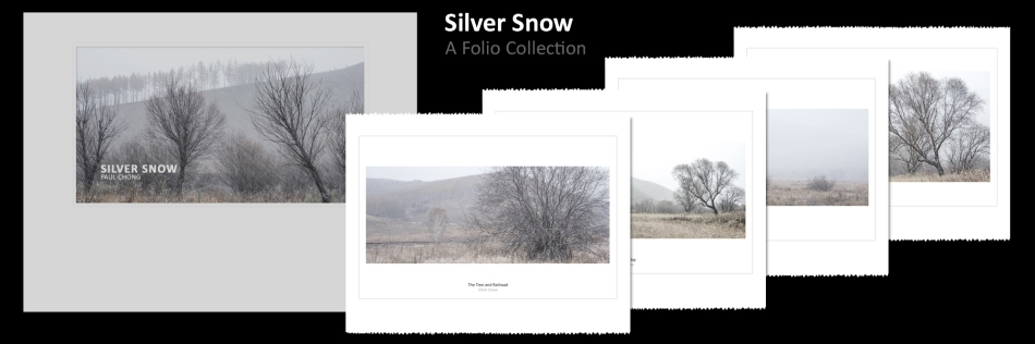 Silver Snow - Photo Folio