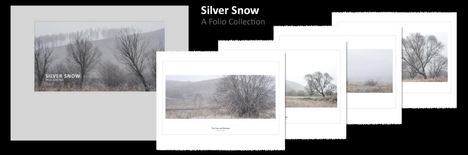 Silver Snow - Photo Folio