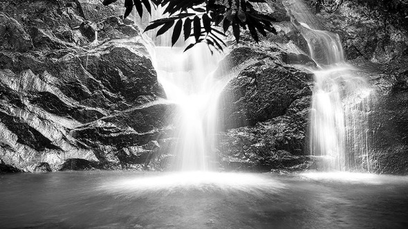 Black and white photography of nature waterfall