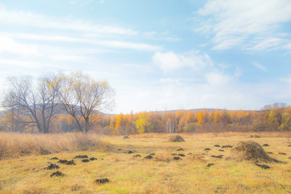 Aershan National Park, Inner Mongolia
