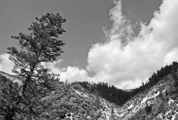 Black and White Mountain Landscape Photography