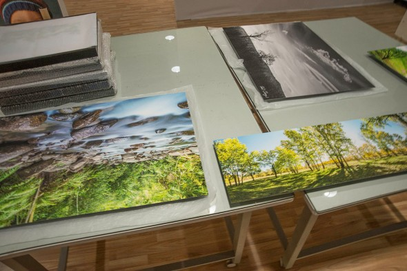 Photography Studio Fine Art Print