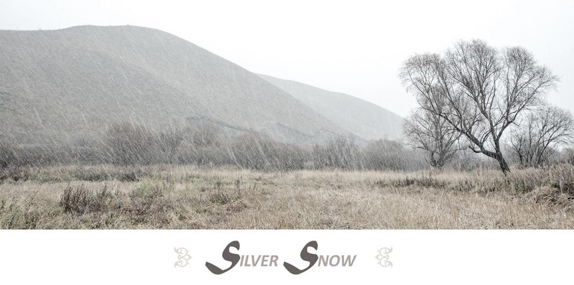 Silver Snow 1