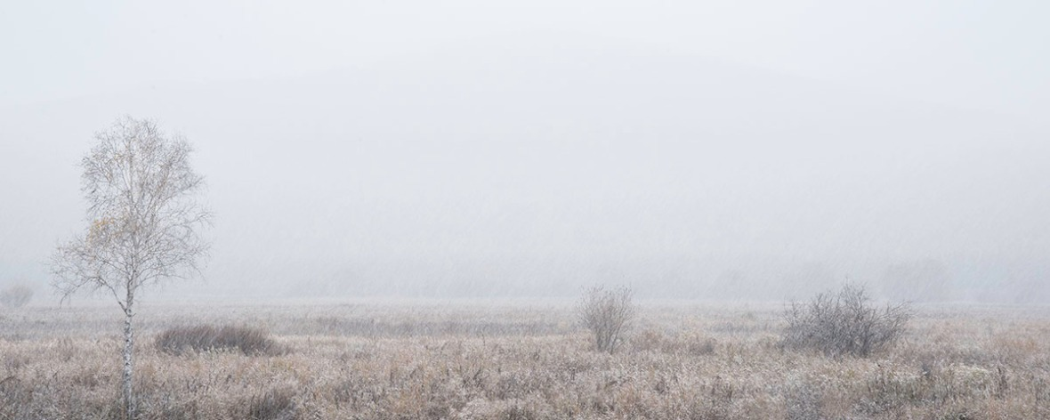 Fine art photography of misty snow field