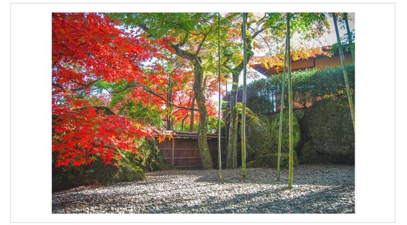 Japan Fine Art Photography - Paul Chong 5