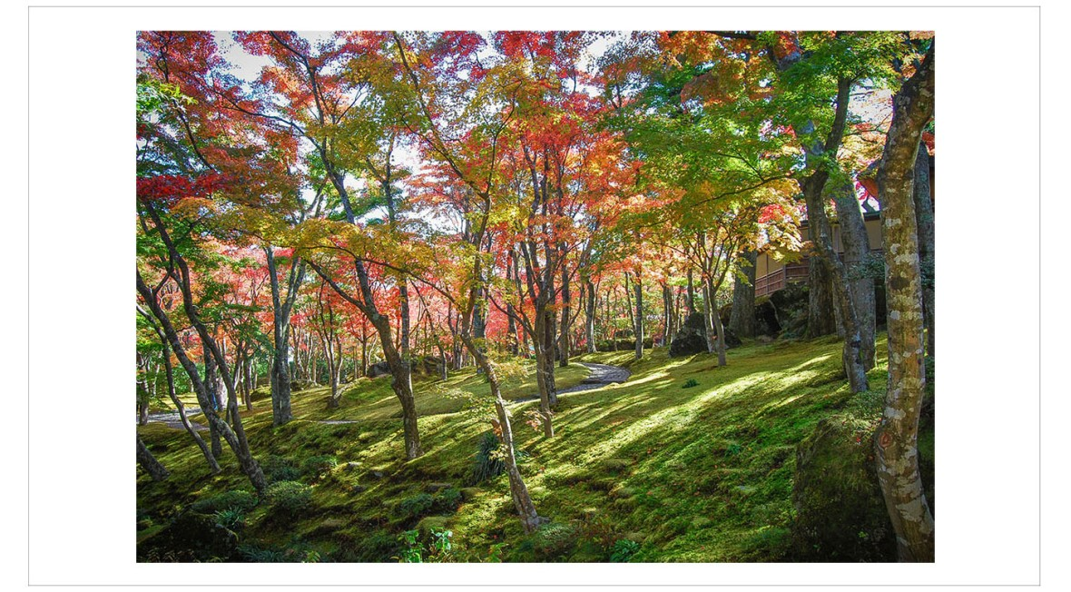 Japan Fine Art Photography - Paul Chong 6