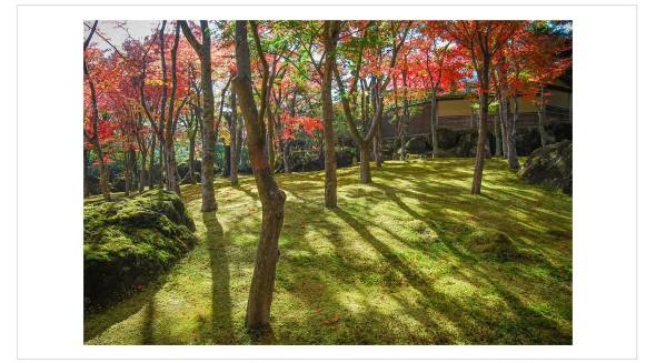 Japan Fine Art Photography - Paul Chong 7