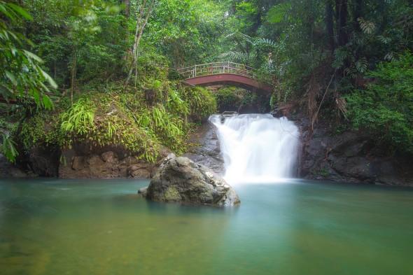 Waterfall Photography - Paul Chong.jpg